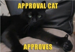 thumbs up cat